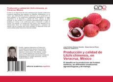 Bookcover of Producción y calidad de Litchi chinensis, en Veracruz, México