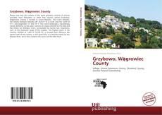 Bookcover of Grzybowo, Wągrowiec County