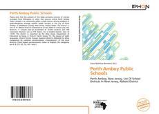 Bookcover of Perth Amboy Public Schools