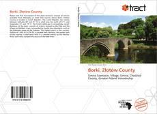 Portada del libro de Borki, Złotów County