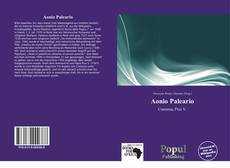 Bookcover of Aonio Paleario