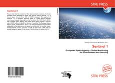 Bookcover of Sentinel 1