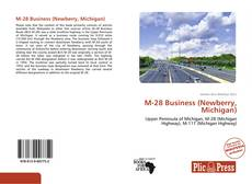 Bookcover of M-28 Business (Newberry, Michigan)