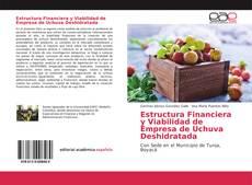 Bookcover of Estructura Financiera y Viabilidad de Empresa de Uchuva Deshidratada