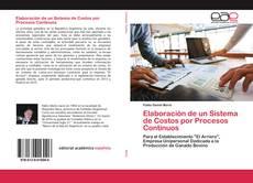 Elaboración de un Sistema de Costos por Procesos Continuos的封面
