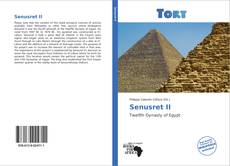 Portada del libro de Senusret II