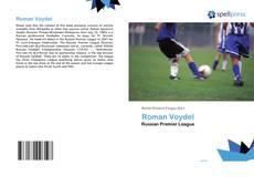 Roman Voydel kitap kapağı
