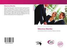 Ndumiso Mamba kitap kapağı