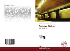 Bookcover of Seokgye Station
