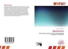 Bookcover of Spumavirus