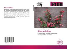 Bookcover of Bibernell-Rose