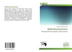 Bookcover of Weberbauerocereus