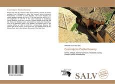 Bookcover of Czernięcin Poduchowny