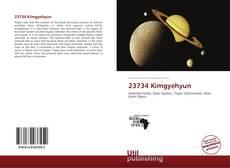 23734 Kimgyehyun kitap kapağı
