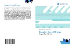 Couverture de Spuyten Duyvil Bridge