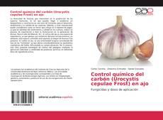Обложка Control químico del carbón (Urocystis cepulae Frost) en ajo