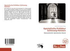 Bookcover of Apostolische Präfektur Schleswig-Holstein