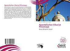 Bookcover of Apostolisches Vikariat Pilcomayo