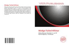 Couverture de Wedge-Tailed Hillstar