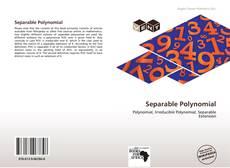 Portada del libro de Separable Polynomial