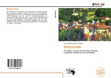 Bookcover of Bickenriede