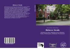 Capa do livro de Bieberer Straße