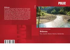 Bidasoa的封面
