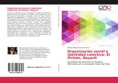 Обложка Organización social e identidad colectiva: El Pichón, Nayarit