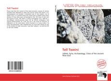 Bookcover of Tell Tweini