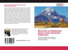 Portada del libro de Derecho al Ambiente Sano como Derecho Colectivo