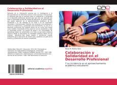 Colaboración y Solidaridad en el Desarrollo Profesional的封面