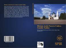 Bookcover of Bistum Assisi-Nocera Umbra-Gualdo Tadino