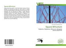 Capa do livro de Square Bifrustum