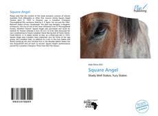 Portada del libro de Square Angel