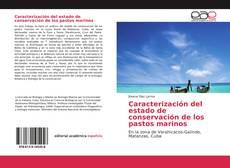 Borítókép a  Caracterización del estado de conservación de los pastos marinos - hoz
