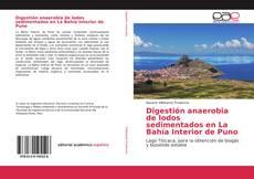Digestión anaerobia de lodos sedimentados en La Bahía Interior de Puno的封面