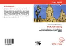 Bookcover of Bistum Baoding