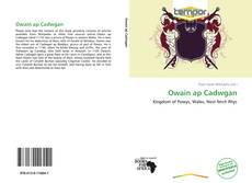 Bookcover of Owain ap Cadwgan