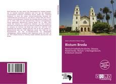 Bistum Breda kitap kapağı