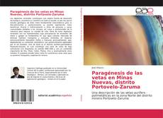 Copertina di Paragénesis de las vetas en Minas Nuevas, distrito Portovelo-Zaruma