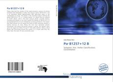 Bookcover of Psr B1257+12 B