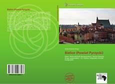 Buchcover von Bielice (Powiat Pyrzycki)
