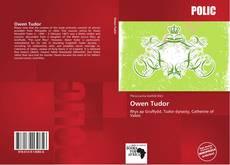 Copertina di Owen Tudor