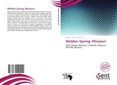 Bookcover of Weldon Spring, Missouri