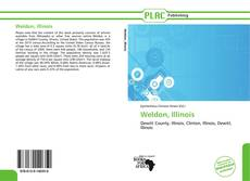 Bookcover of Weldon, Illinois