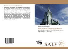 Bookcover of Bistum Carcassonne-Narbonne