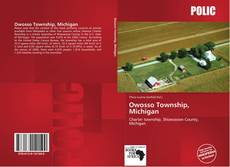 Bookcover of Owosso Township, Michigan