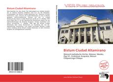 Bookcover of Bistum Ciudad Altamirano
