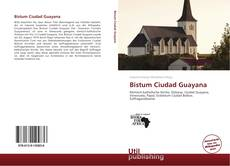 Portada del libro de Bistum Ciudad Guayana