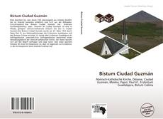 Bistum Ciudad Guzmán kitap kapağı